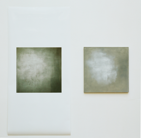 Jo McGonigal, Grey Flash Painting & Photograph (2010)